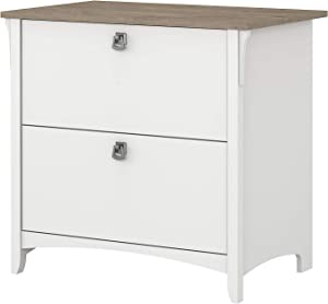 Bush Furniture Salinas 2 Drawer Lateral File Cabinet in Pure White and Shiplap Gray