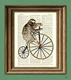Amazon Price History for:Holden the Hipster Sloth on a Penny Farthing bicycle dictionary page book art print