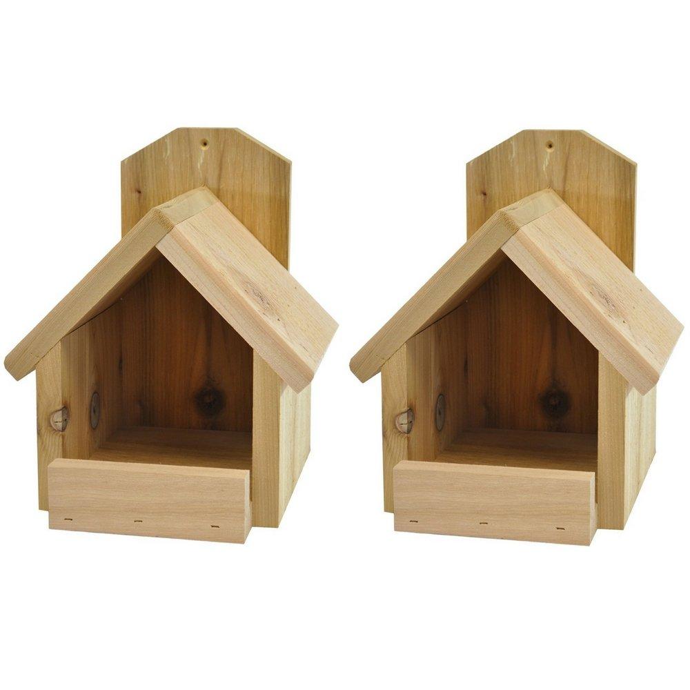 amazon com backyard boys woodworking cardinal nest box 2 pack