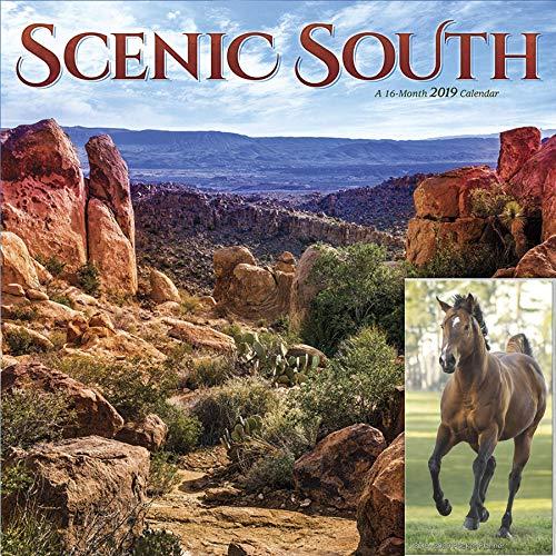 Trends International Scenic South Wall 2019 Horses Pocket Planner Calendar Bundle 12