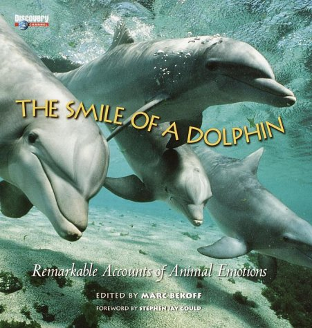 Download The Smile of a Dolphin pdf epub