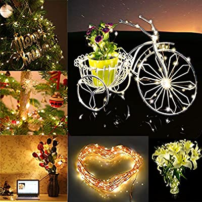 Accmor Christmas Led String Lights for Indoor/Outdoor - USB Bedroom Copper Decorations for Wedding and Party - with USB Cable, Remote Controller, Power Adapter - 33ft /100 Waterproof Starry LEDs