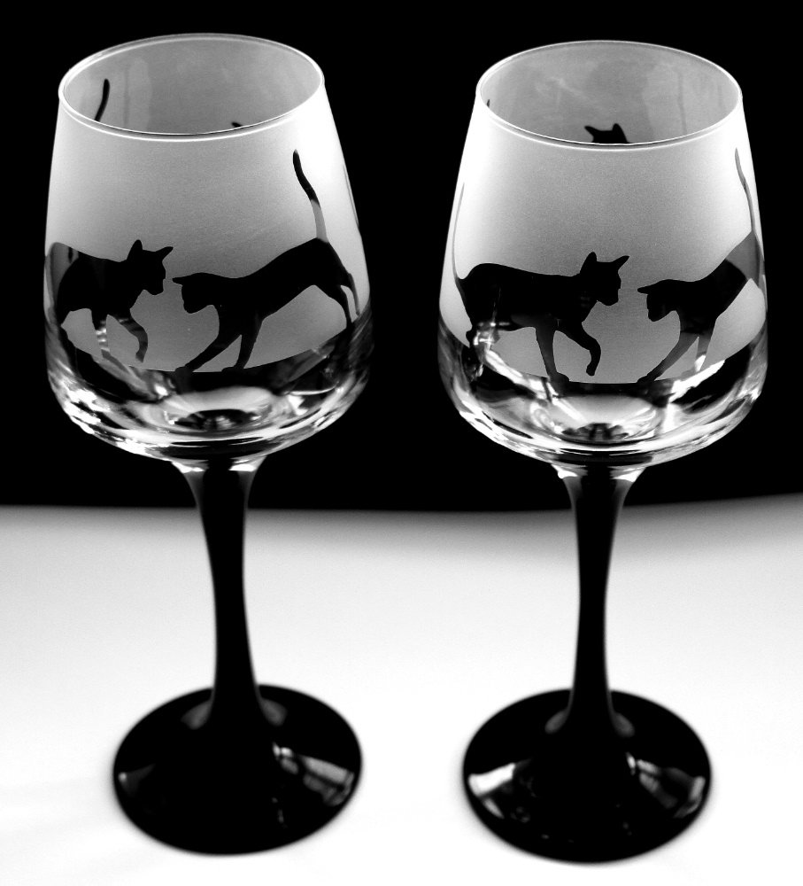 Cat playing gift black stem wine glasses Boxed Glass in the forest