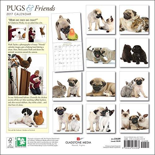 Pugs-Friends-2017-Calendar