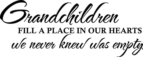 A Child Fills A Place In Your Heart That You Never Vinyl Wall Decal Art K48