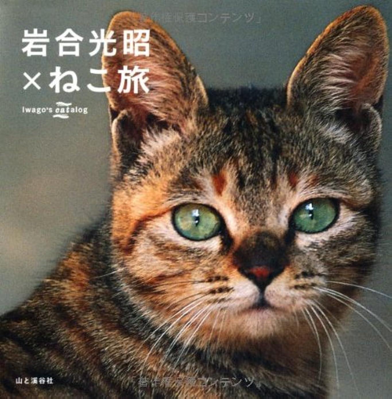 大気高齢者野球Hanako (ハナコ) 2018年 6月14日号 No.1157[公園と、動物園と。]