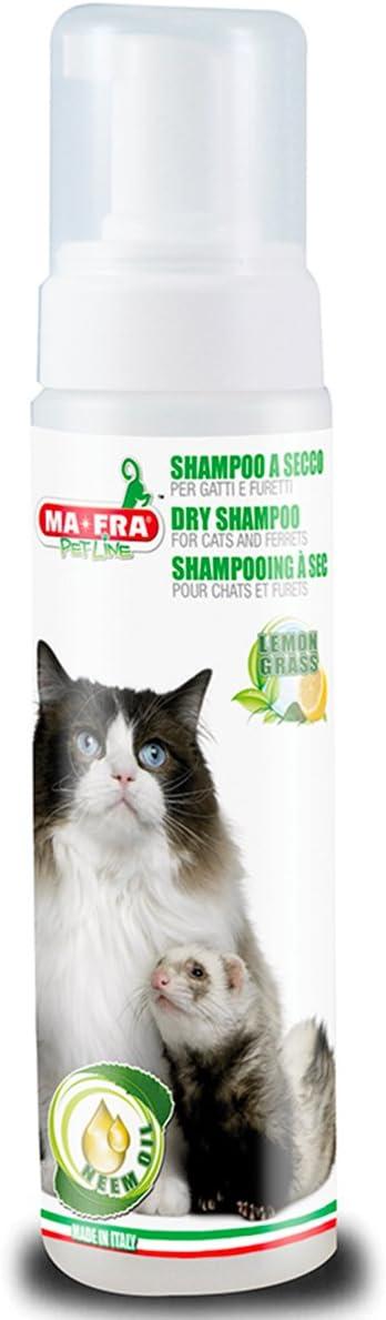 AMICO MIO seco Champú para Gatos y Animales con Neen Aceite ...