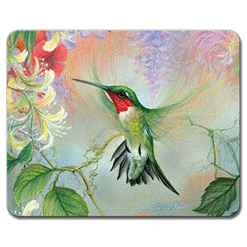 Natures Gift of Feathers Hummingbird 10 Inch Glass Kitchen Bar Cutting Board