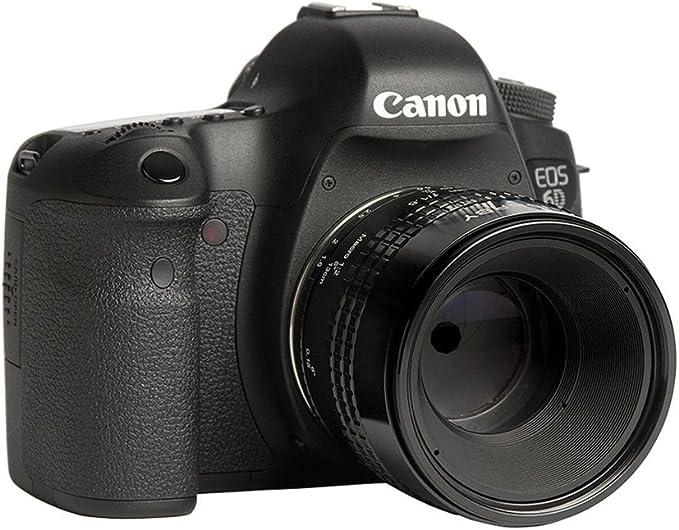 Lensbaby Velvet 56 Canon Ef Porträt Und Makro Kamera