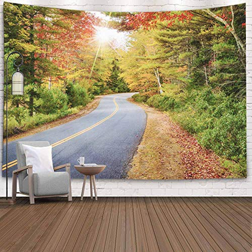 EMMTEEY Christmas Tapestry, Tapestries Decor Living Room Bedroom for Home 80x60 Inches for Winding Road Curves Through Autumn Foliage in New England Sun Rays Peeking Colorful Trees