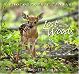 Lost in the Woods, Carl R. Sams, Jean Stoick, 0967174880