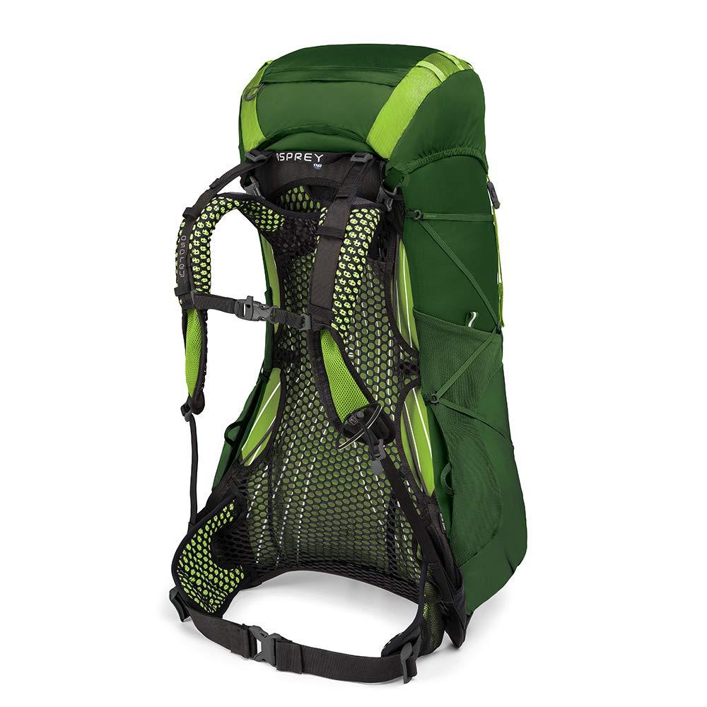 Osprey Packs Exos 38 Backpacking Pack, Tunnel Green, Medium