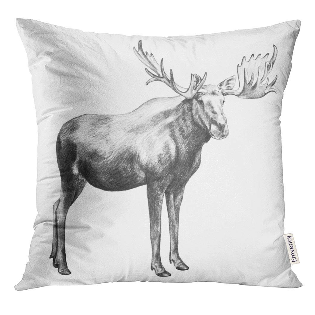 Buy Vanmi Throw Pillow Cover Black Alces Moose Pencil Sketch White Huge Standing With Big Antlers Animal Bull Decorative Pillow Case Home Decor Square 20x20 Inches Pillowcase Online At Low Prices In