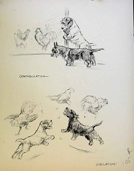 Old Original Antique Victorian Print Dogs Happy Dog Drawing
