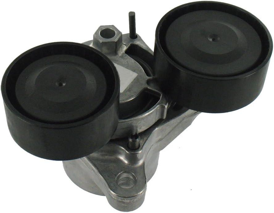 SKF VKM 38306 Kit de galet enrouleur multi-V