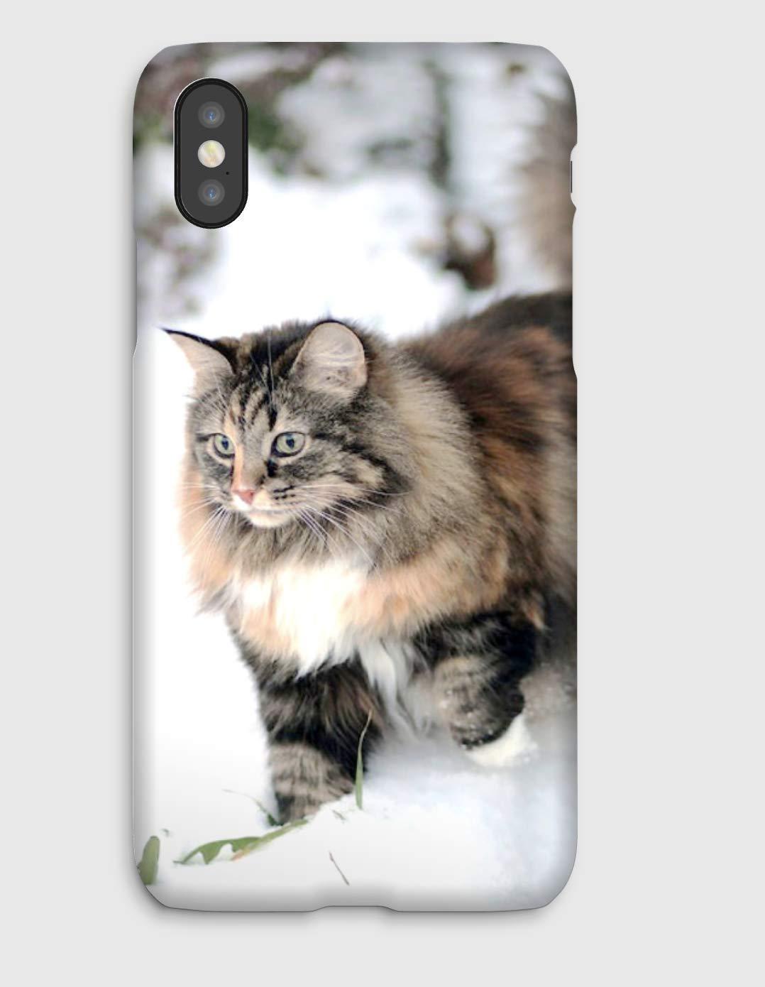 Chat Norvégien, coque pour iPhone XS, XS Max, XR, X, 8, 8+, 7, 7+, 6S, 6, 6S+, 6+, 5C, 5, 5S, 5SE, 4S, 4,