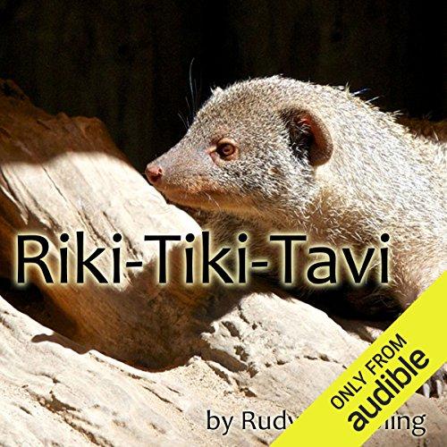 Riki-Tiki-Tavi - Jungle Tiki