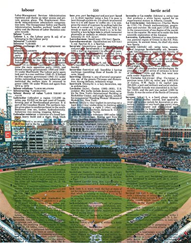 Detroit Tigers photo Dictionary Art Print Comerica Park Photo Baseball Art Gift For Him Detroit Tigers Baseball Park