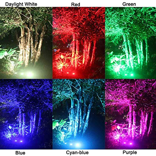 Zuckeo Landscape Lights 6w Rgb Remote Control Led Landscape Lighting With 12v 24v Low Voltage Transformer Waterproof 16 Color Changing Garden Pathway Decorative Lights For Indoors Outdoors 10 Pack Amazon Price Tracker Pricepulse