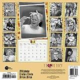 I Love Lucy Wall Calendar (2016)