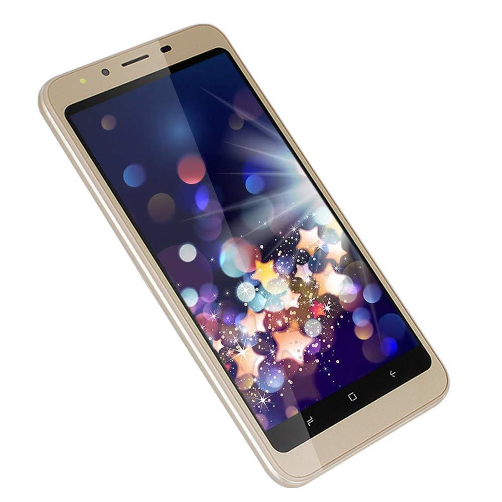 2019 New -Unlocked Smartphone, Dual HD Camera 4.7 inch Android 4.4 WiFi GPS 512+4G Dual SIM Mobile Phone Cell Phone (Gold)