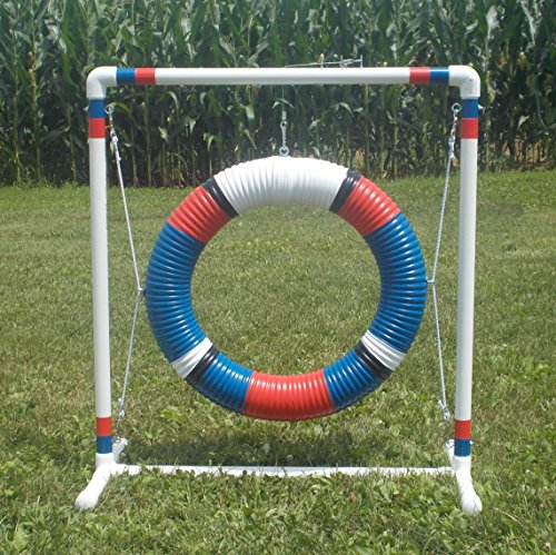 Red N Blue Tire Jump for Small Dogs by Agility by Carlson