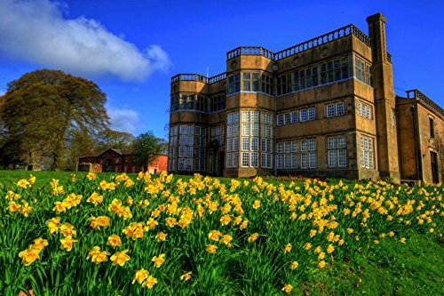 Rocament 24x16 Inches Wall-Canvas Stickers Poster England Daffodils Parks Houses Astley Hall Chorley Palace - Wall Art Prints For Home Decoration
