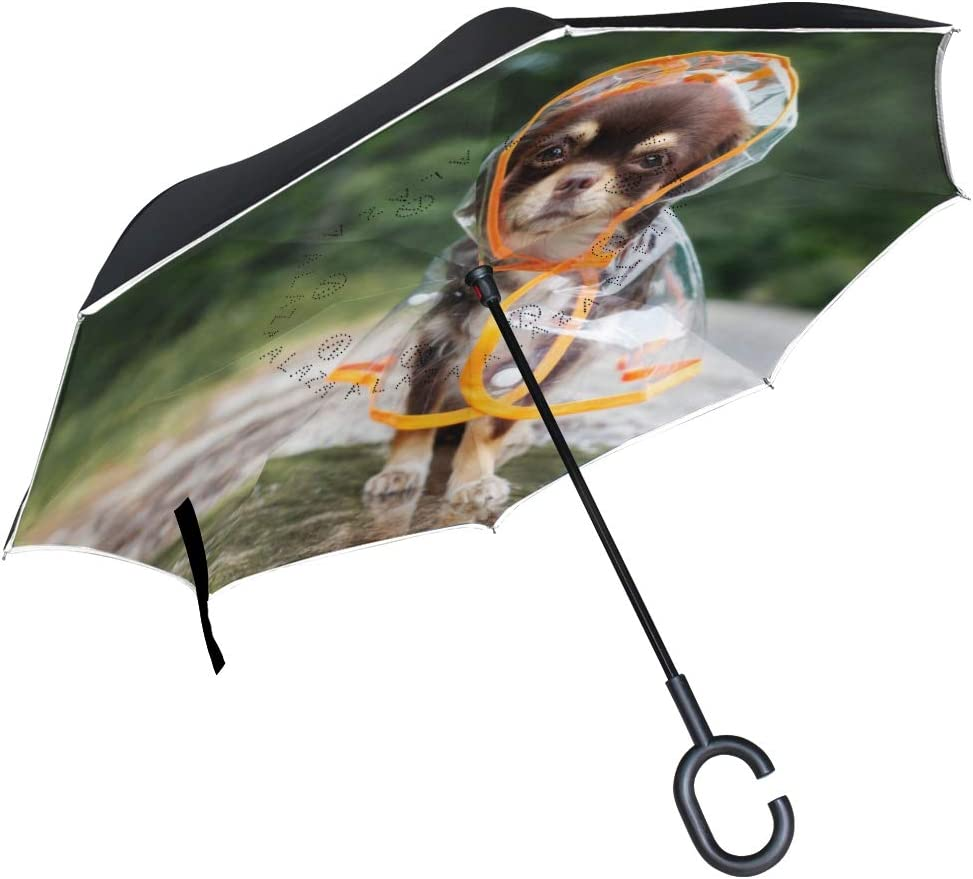 Funny Chihuahua Dog Posing In A Raincoat Double Layer Windproof UV Protection Reverse Umbrella With C-Shaped Handle Upside-Down Inverted Umbrella For Car Rain Outdoor