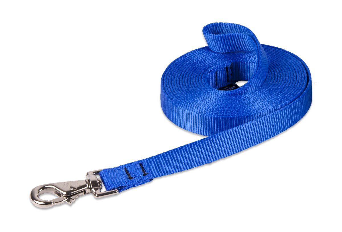 LupinePet Basics 3/4'' Blue 30-foot Extra-Long Training Lead/Leash for Medium and Larger Dogs