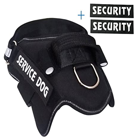 Amazon.com : MS KeKe Dog Harness Vest With Two Pairs Of Velcro ...
