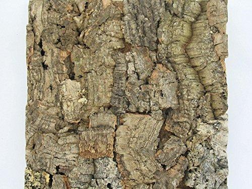 Cork Terrarium Background Tile - Natural Cork Top 12x12 Inches Tree Tile