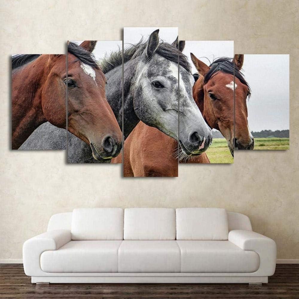 TXFMT Sin marco lienzo decoración pintura hecha a mano DIY Animal negro y marrón carreras de caballos Cuadro en Lienzo 5 Partes Formato Grande Impresion en Calidad Fotografica Tejido noTejido HD Decor