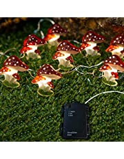 Fairy Lights, Battery Operated String Lights, Rainproof Japanese Decor, 10ft 30LED Cute Decoration for Bedroom, Room, Valentines Day, Christmas, Holidays and More