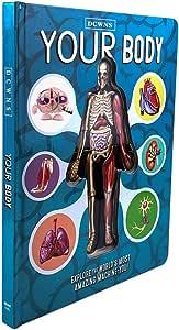 Acreny Anatomía del Cuerpo Humano en Inglés Libro de