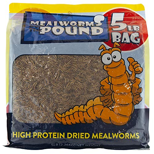 MBTP Bulk Dried Mealworms - Treats for Chickens & Wild Birds (5 -