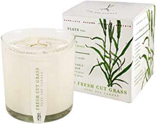 product image for Fresh Cut Grass Soy Candle with Plantable Box