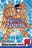 Knights of the Zodiac (Saint Seiya), Vol. 14