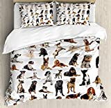 Dog Lover Decor Queen Size Duvet Cover Set by Ambesonne, Picture with Purebred Dogs Australian Sheepdog Belgian Boxer Italian Mastiff Pedigree, Decorative 3 Piece Bedding Set with 2 Pillow Shams