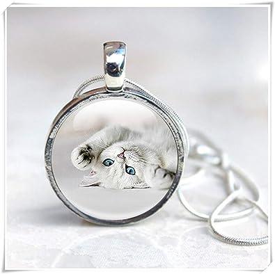 Leonid Meteor Collar de Gato de Ducha, Colgante de Gato, Joyas de Animales.