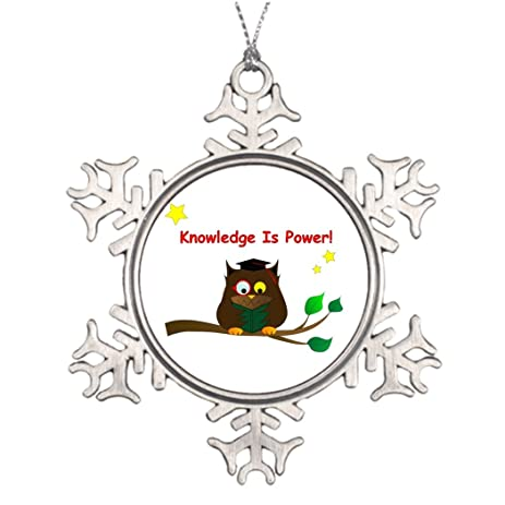 xmas trees decorated reading wise owl outdoor christmas tree snowflake ornaments school event - Outdoor Owl Christmas Decorations