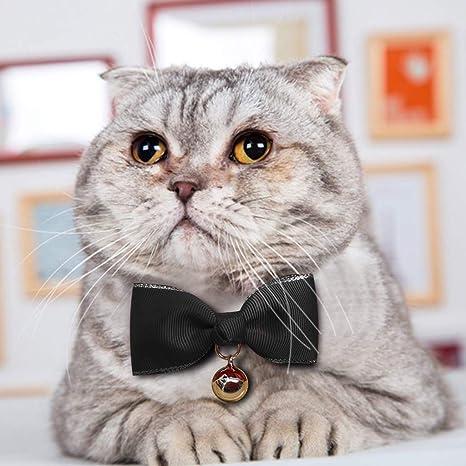 succeedtop Pet Corbatas pequeñas para Perros, para Mascotas ...