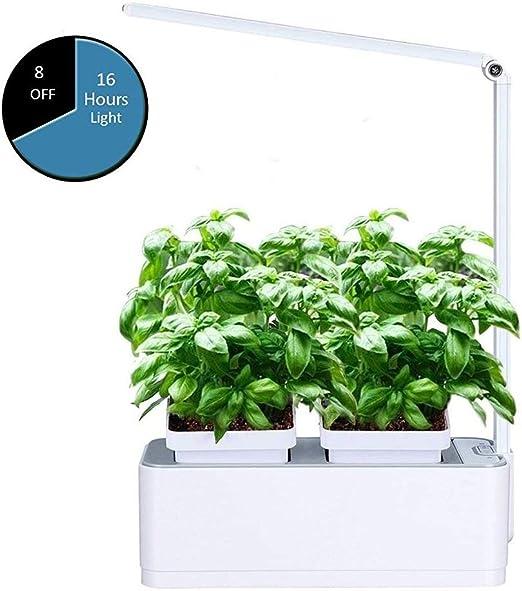 HAIT Kit De Jardín Interior, Sistema De Cultivo LED Hydroponics, 2 Macetas De Riego Automático, Que Incluye (Semillas De Lechuga, Fertilizantes, Medios De Plantación): Amazon.es: Hogar