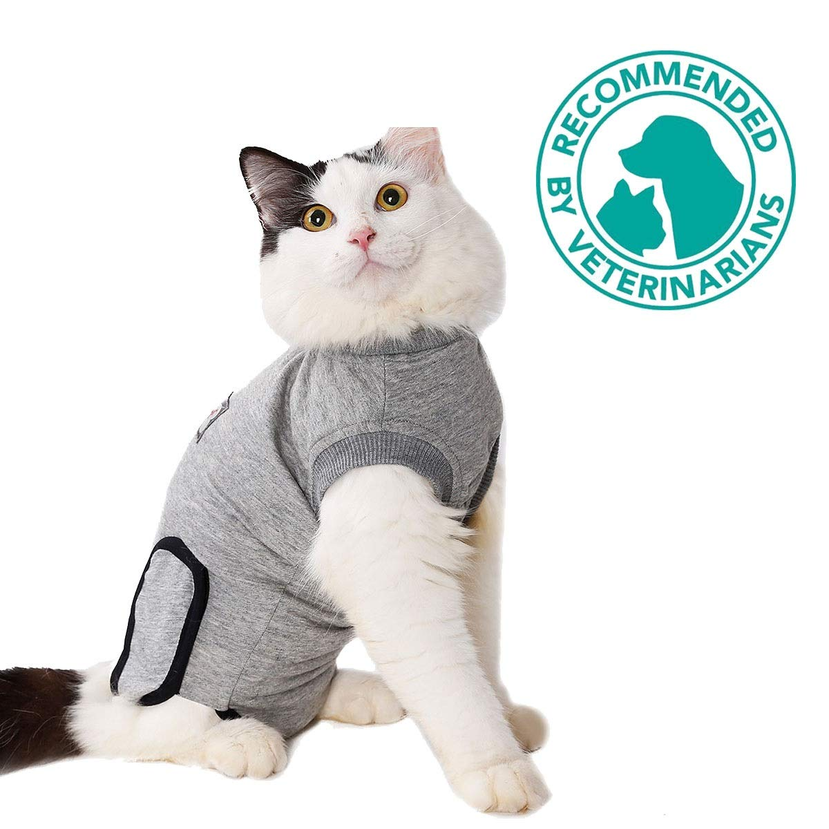 cat-recovery-suit-e-collar-alternative