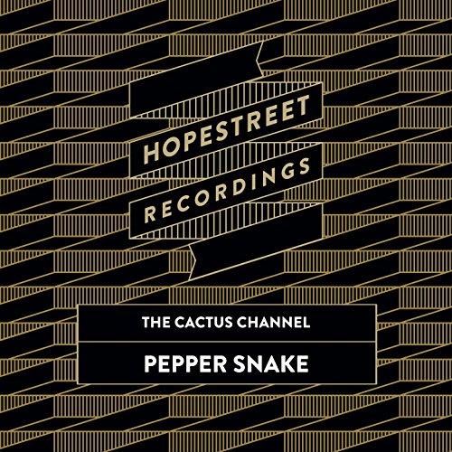 Channel Recording Snakes (Pepper Snake)
