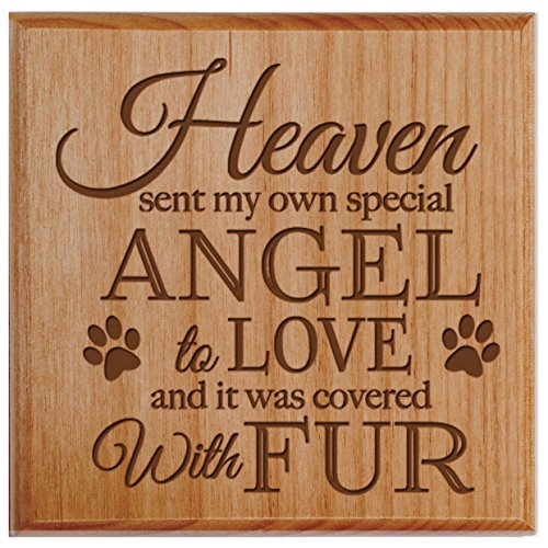 Pet Urns SMALL Sympathy Keepsake box for pet urn for ashes Heaven sent my own special angel to love Holds SMALL portion of ashes 5.5