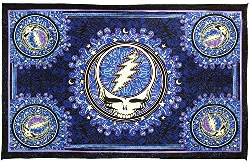 Sunshine Joy Grateful Dead Steal Your Face Mini Tapestry Dan Morris Wall Art Poster Size 30×45 Inches