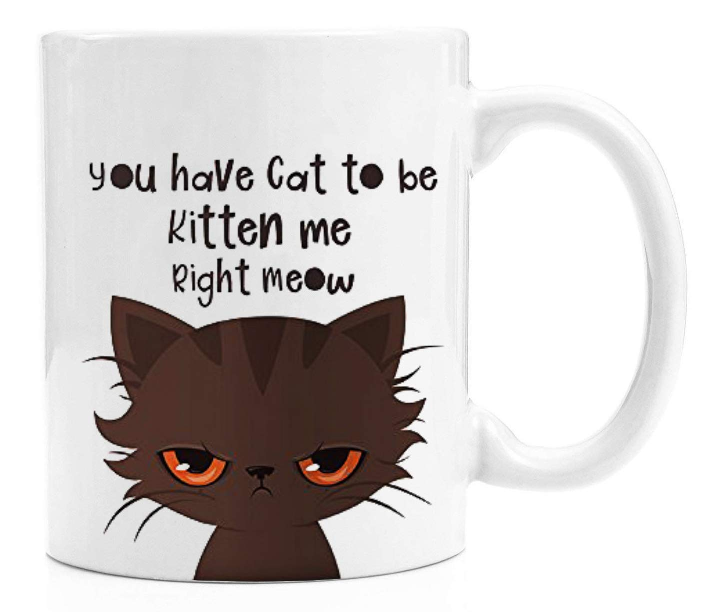 Funny Coffee Mug - You've Cat To Be Kitten Me Right Meow - 11 Oz White Ceramic Glossy Mug With Large C-handle