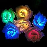 PragAart Rose Flower LED String Light for Wedding, Garden and Festival Decoration - 2.5 Meter Length with 20 LED Roses, Multicolor