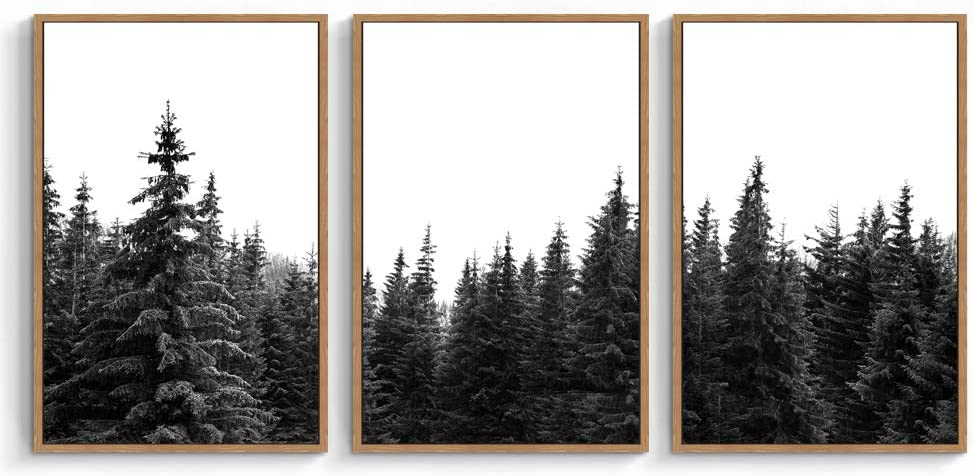 "signwin 3 Piece Framed Canvas Wall Art Black Forest Canvas Prints Home Artwork Decoration for Living Room,Bedroom - 16""x24""x3 Panels"