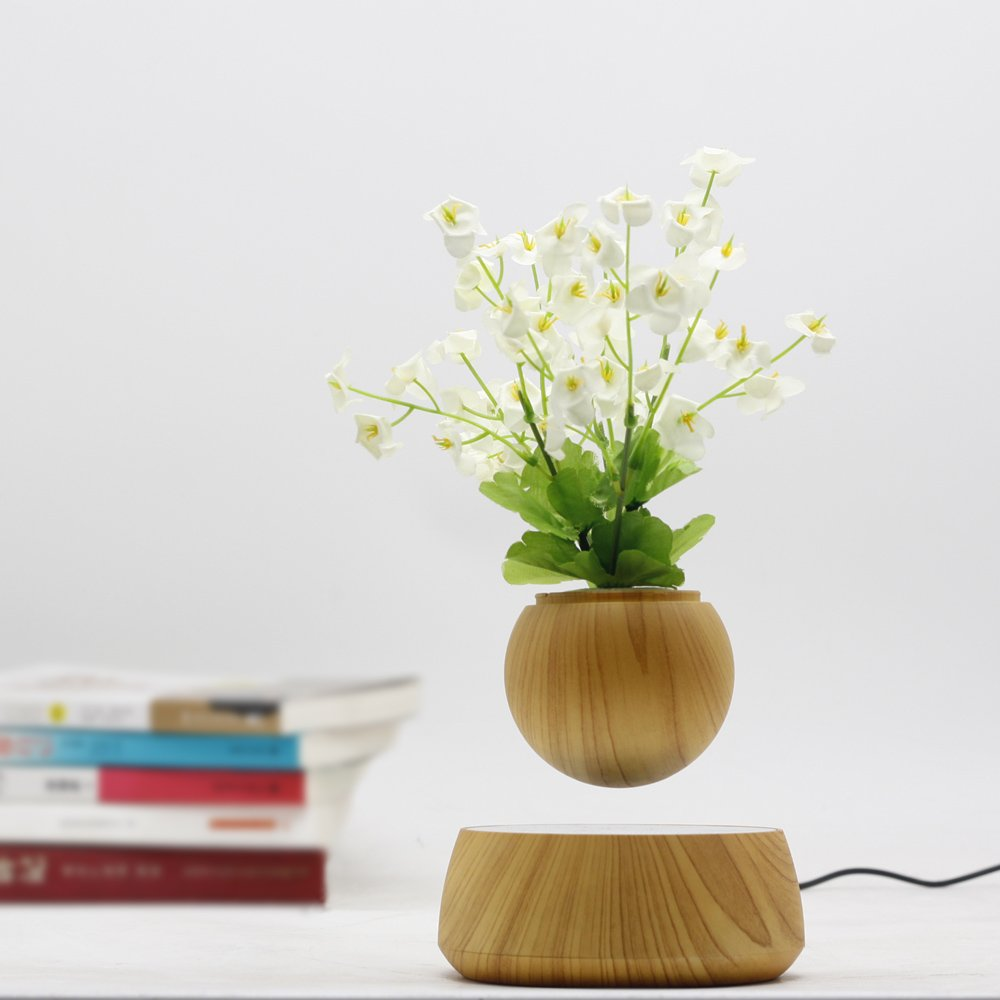 Levitation Wooden Bonsai Pot for Home and Office Decorations-Creative Prsent Floating air Bonsai by floatingglobes (Image #3)